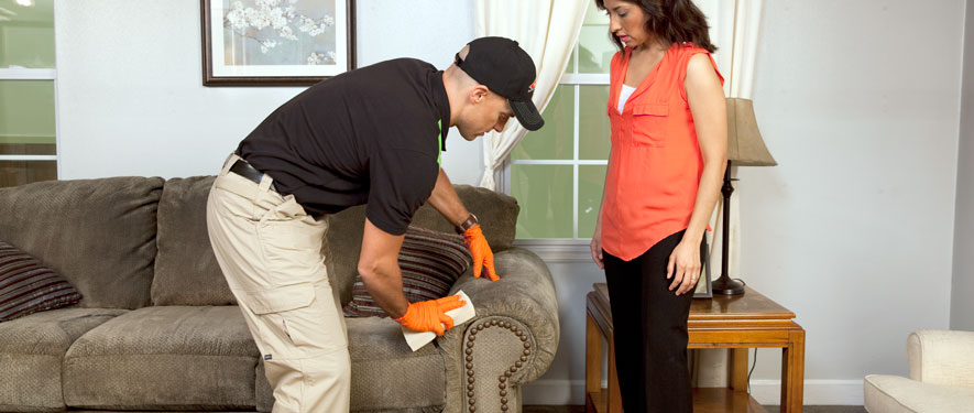 Portland, ME carpet upholstery cleaning